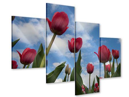Acrylglasbild 4-teilig modern Tulpen im Himmel