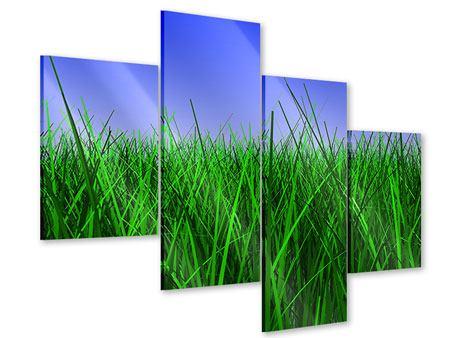 Acrylglasbild 4-teilig modern Im Gras