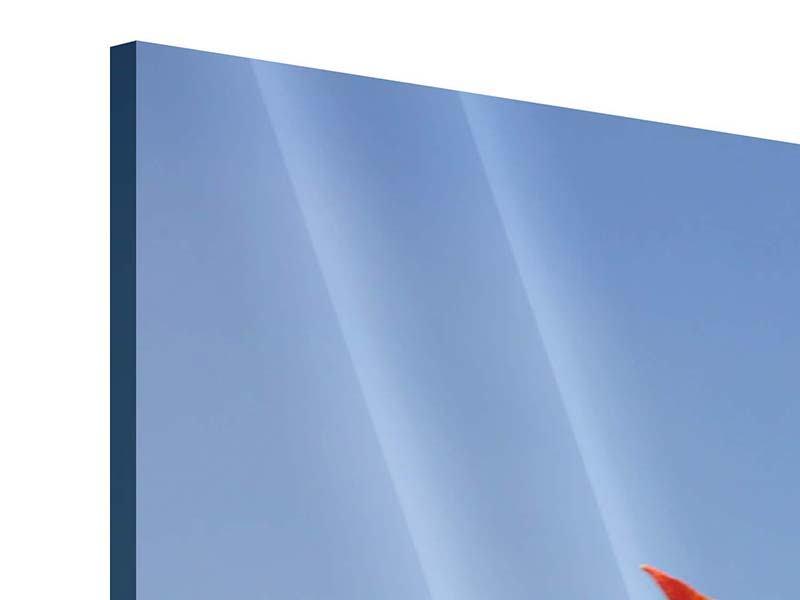 Acrylglasbild 4-teilig modern Rote Tulpen in XXL