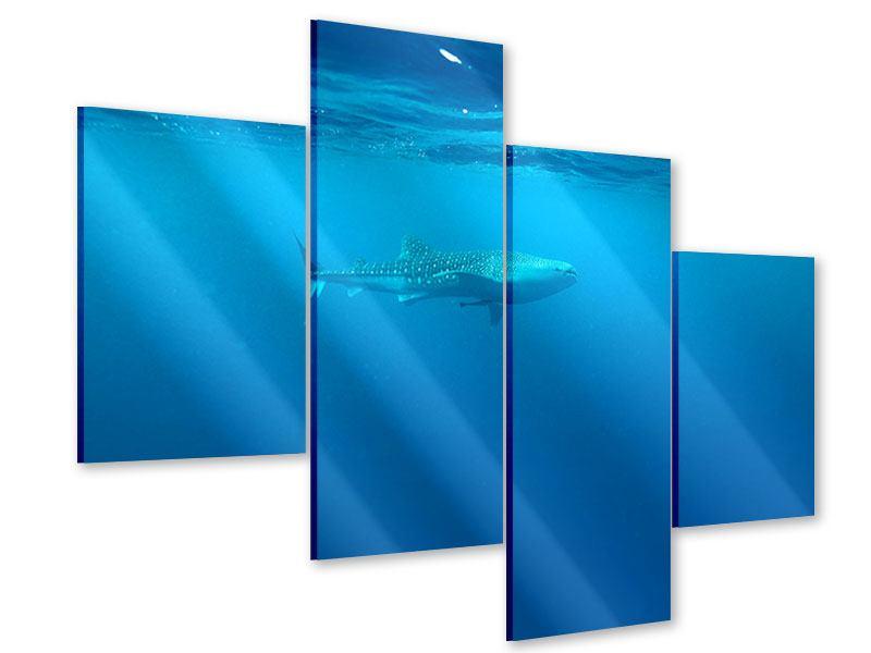 Acrylglasbild 4-teilig modern Der Walhai