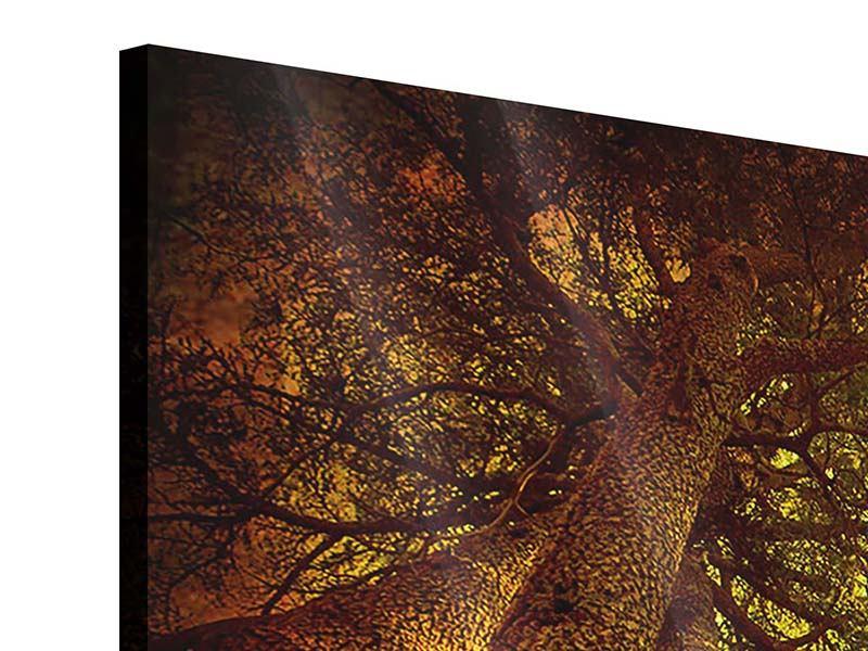 Acrylglasbild 4-teilig modern Cedar Baum