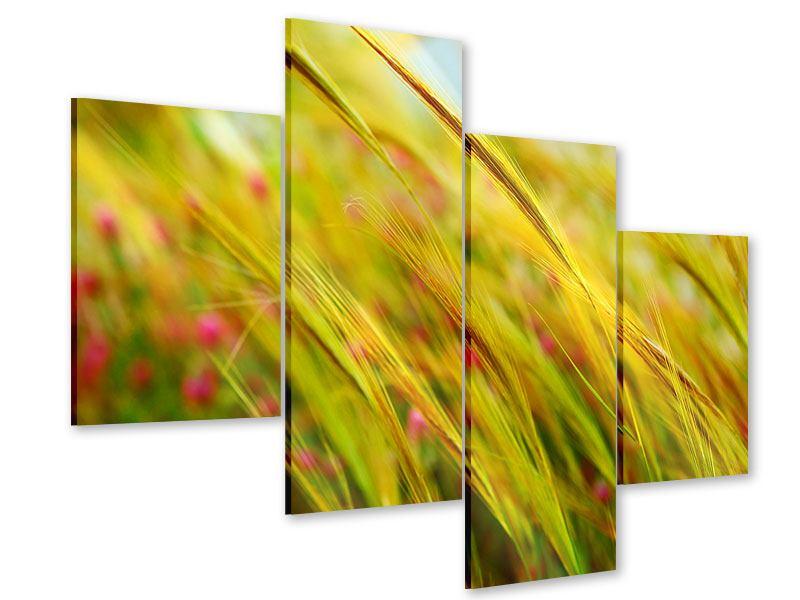 Acrylglasbild 4-teilig modern Das Weizenfeld