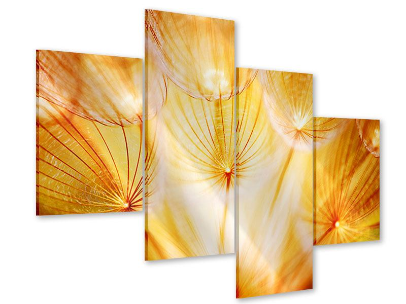 Acrylglasbild 4-teilig modern Close Up Pusteblume im Licht