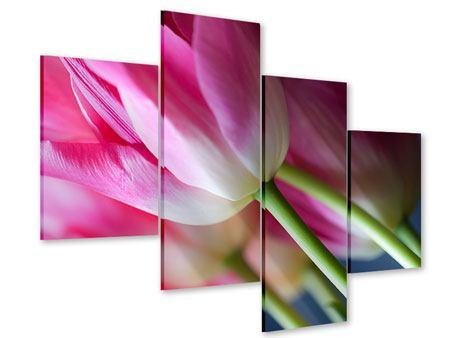 Acrylglasbild 4-teilig modern Makro Tulpen