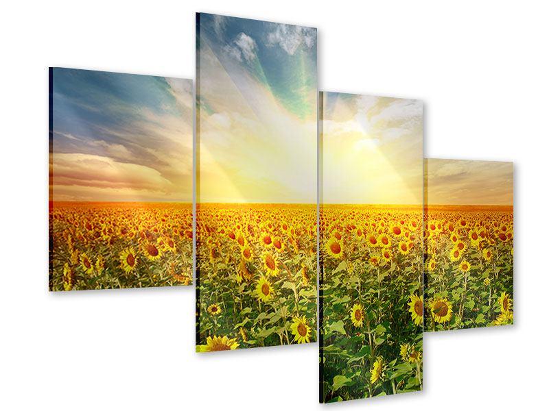 Acrylglasbild 4-teilig modern Ein Feld voller Sonnenblumen