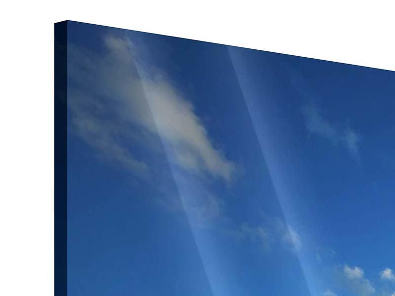 Acrylglasbild 4-teilig modern Die See