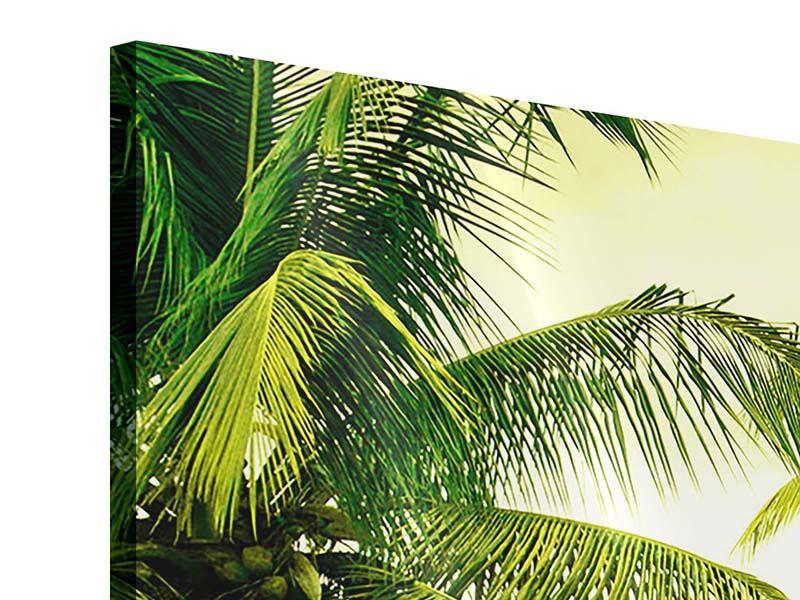 Acrylglasbild 4-teilig modern Reif für die Insel