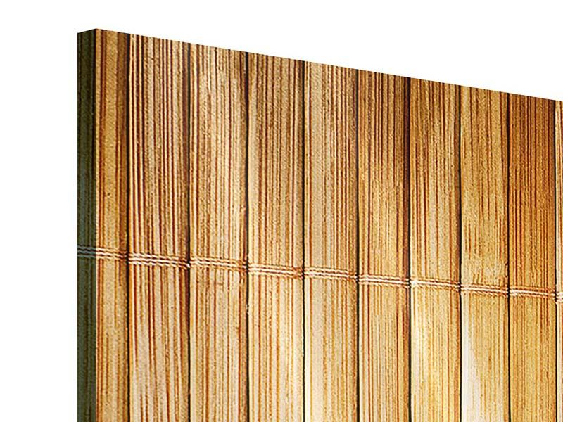 Acrylglasbild 4-teilig modern Bambusrohre