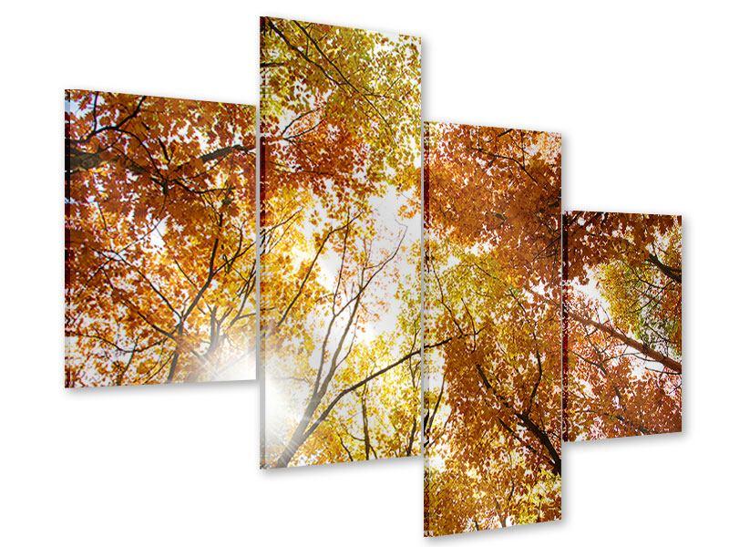Acrylglasbild 4-teilig modern Herbstbäume