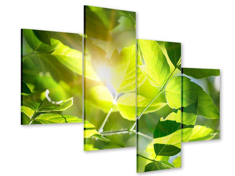 Acrylglasbild 4-teilig modern Es grünt so grün