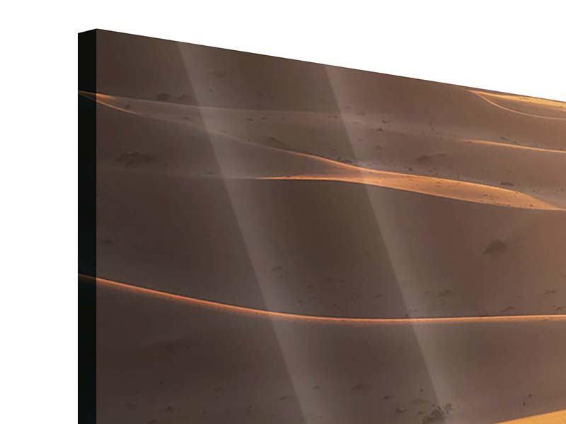 Acrylglasbild 4-teilig modern Wüstenwanderung