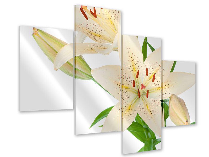Acrylglasbild 4-teilig modern Weisser Lilienstrauch