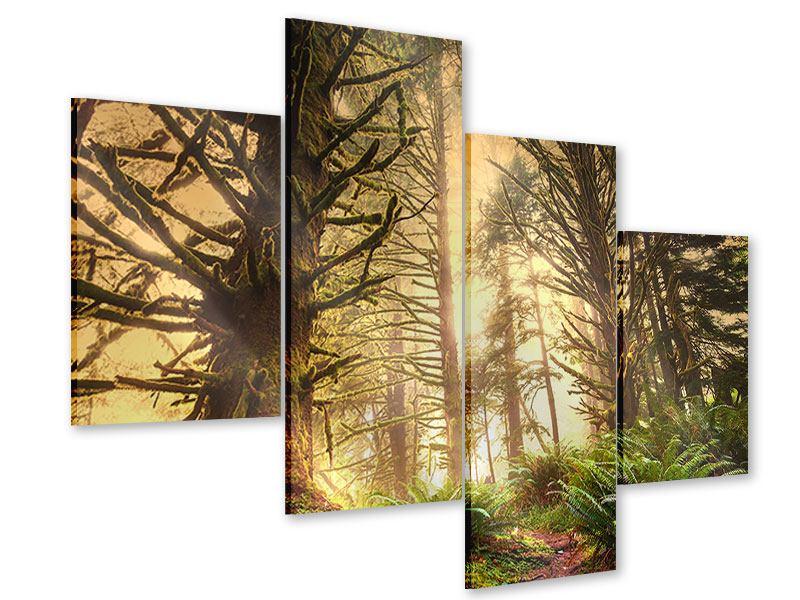 Acrylglasbild 4-teilig modern Sonnenuntergang im Dschungel