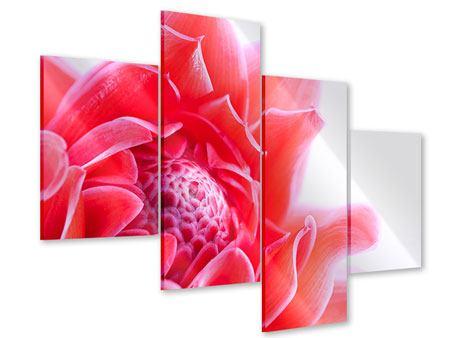 Acrylglasbild 4-teilig modern Etlingera XXL