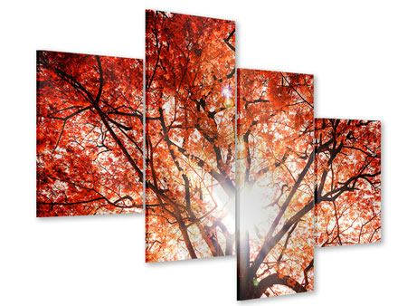 Acrylglasbild 4-teilig modern Herbstlicht