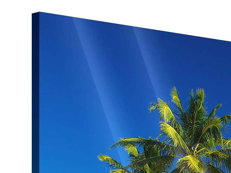 Acrylglasbild 4-teilig modern Aloha