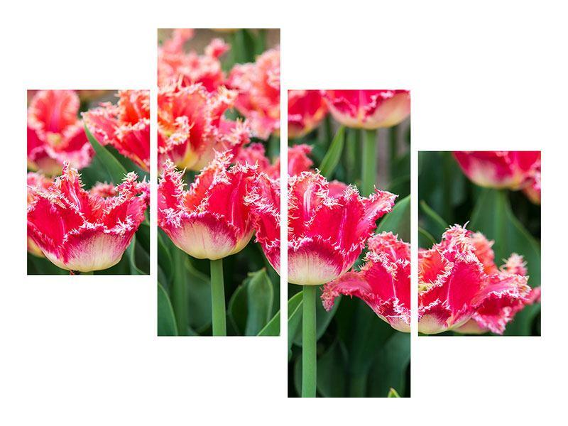 Acrylglasbild 4-teilig modern Die Tulpenwiese