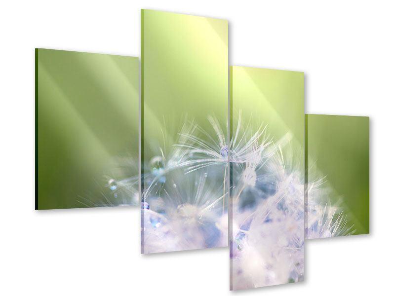 Acrylglasbild 4-teilig modern Pusteblume XL im Morgentau