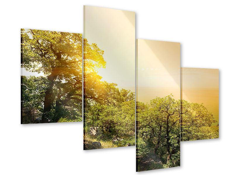 Acrylglasbild 4-teilig modern Sonnenuntergang in der Natur