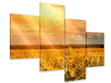Acrylglasbild 4-teilig modern Goldenes Licht für Sonnenblumen