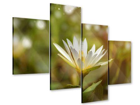Acrylglasbild 4-teilig modern Lilien-Lichtspiel