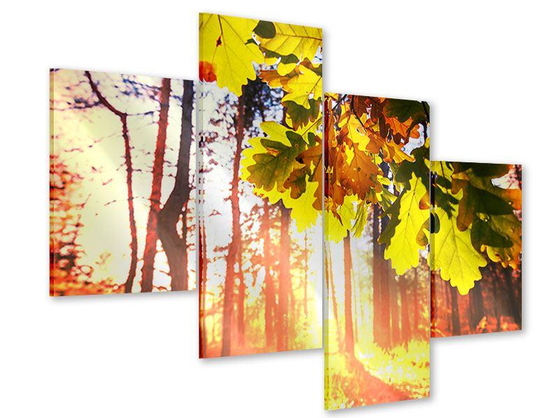 Acrylglasbild 4-teilig modern Herbst