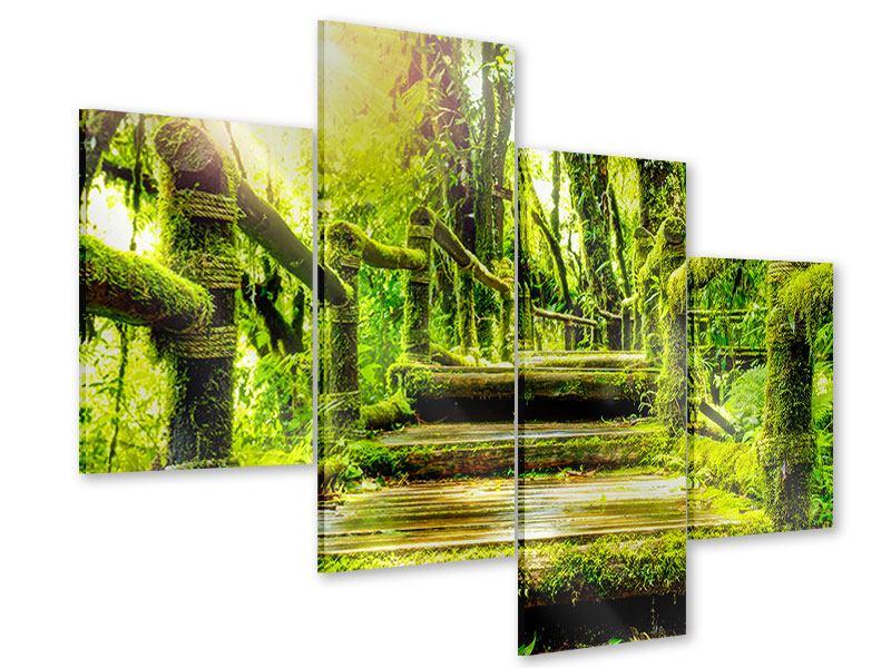 Acrylglasbild 4-teilig modern Moos