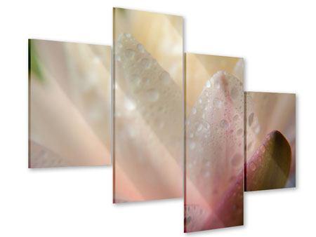 Acrylglasbild 4-teilig modern Close Up Seerose