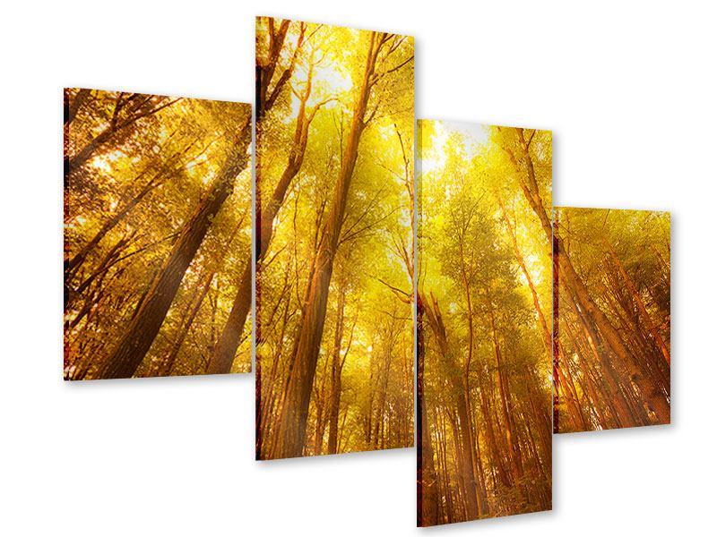 Acrylglasbild 4-teilig modern Herbstwald