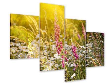 Acrylglasbild 4-teilig modern Sommerliche Blumenwiese