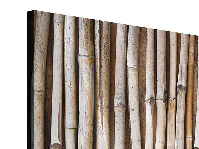 Acrylglasbild 4-teilig modern Getrocknete Bambusrohre