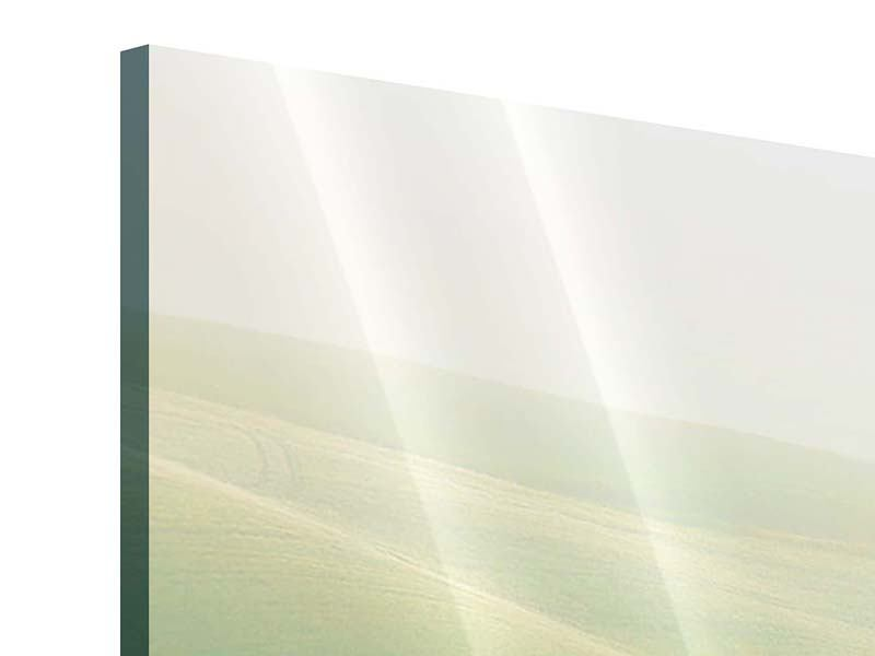 Acrylglasbild 4-teilig modern Toskana