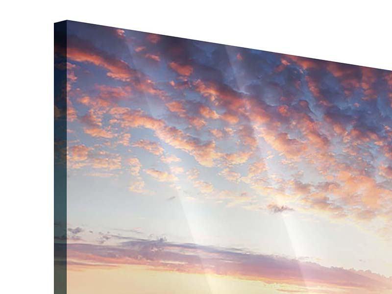 Acrylglasbild 4-teilig modern Ein Blumenfeld bei Sonnenaufgang