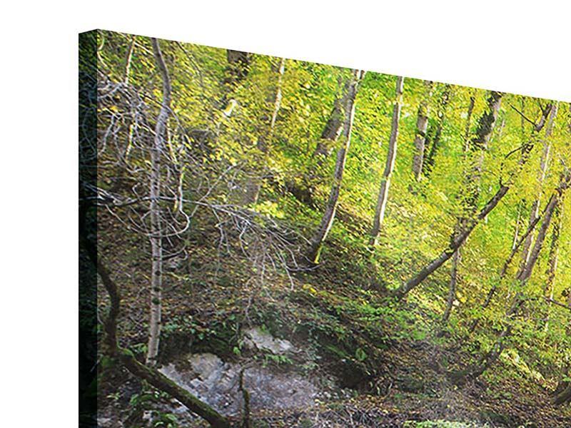 Acrylglasbild 4-teilig modern Fliessender Wasserfall