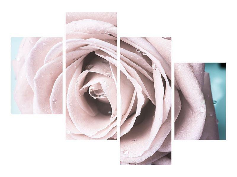 Acrylglasbild 4-teilig modern Pastellrose