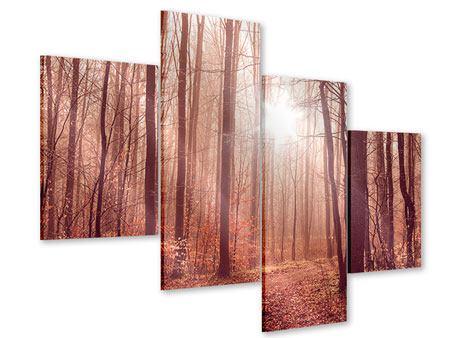 Acrylglasbild 4-teilig modern Sonnenuntergang im Herbstwald