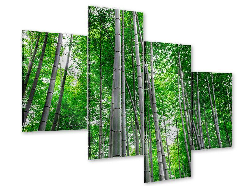 Acrylglasbild 4-teilig modern Bambuswald
