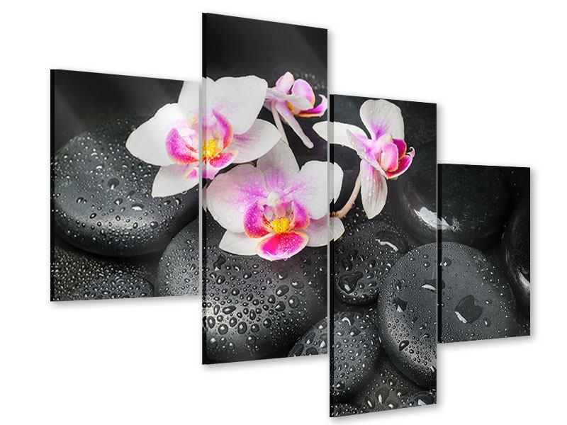 Acrylglasbild 4-teilig modern Feng-Shui-Orchidee Zen