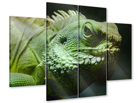 Acrylglasbild 4-teilig XXL Leguan