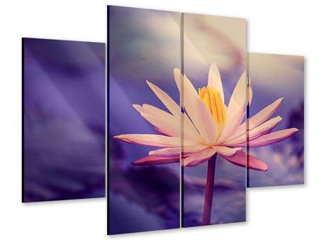 Acrylglasbild 4-teilig Lotus bei Sonnenuntergang