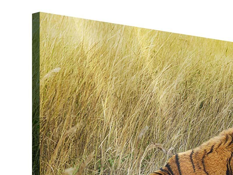 Acrylglasbild 4-teilig Der Tiger