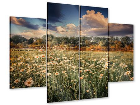 Acrylglasbild 4-teilig Die Wiesenmargerite am Fluss
