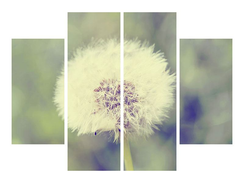 Acrylglasbild 4-teilig Die Pusteblume