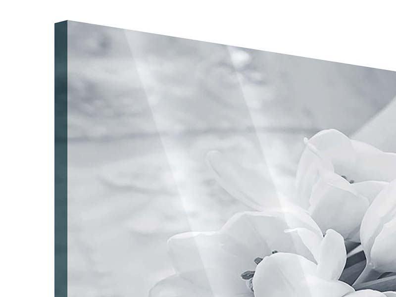 Acrylglasbild 4-teilig Romantisches Tulpenbukett