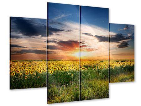 Acrylglasbild 4-teilig Ein Feld von Sonnenblumen