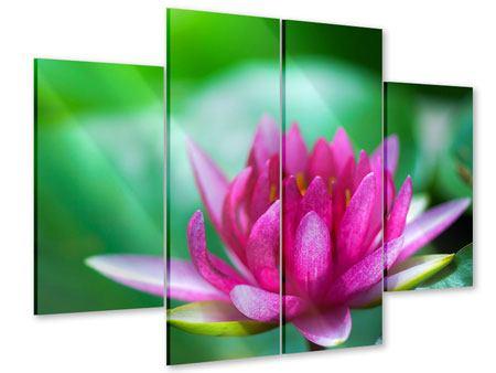 Acrylglasbild 4-teilig Lotus in Pink