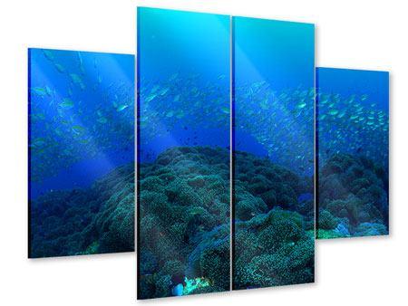 Acrylglasbild 4-teilig Fischschwärme