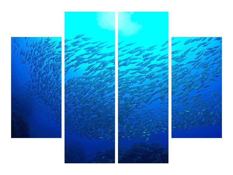 Acrylglasbild 4-teilig Fischwelt