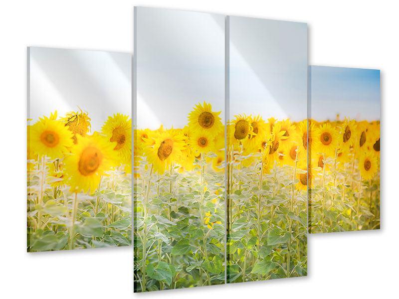 Acrylglasbild 4-teilig Im Sonnenblumenfeld