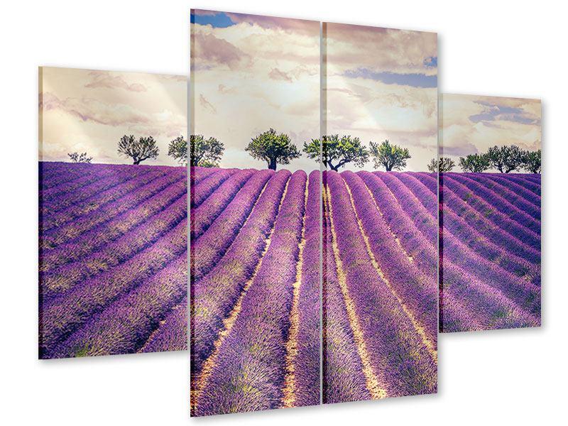 Acrylglasbild 4-teilig Das Lavendelfeld